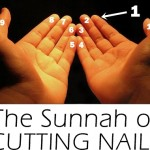 The Sunnah Of Cutting Nails