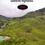 Traveling Malaysia – Cameron Highlands