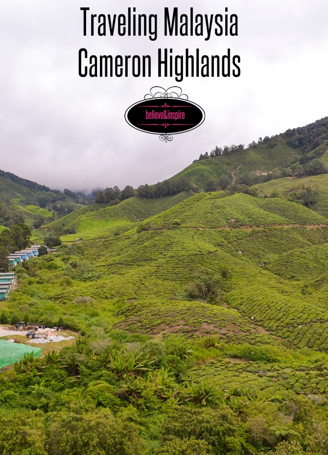 Traveling Malaysia – Cameron Highlands